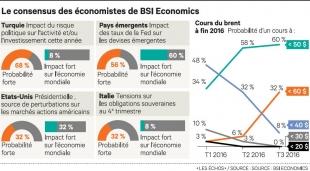 Le Consensus de BSI Economics dans Les Echos
