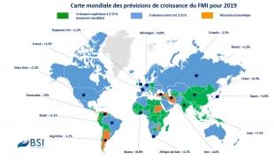 BSI Map : prévisions de croissance 2019 (Policy Brief)