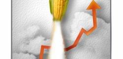 La financiarisation de l'agriculture